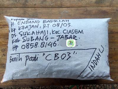 Benih Padi Pesanan  H. ENDANG B. Subang, Jabar.   (Setelah di Packing).