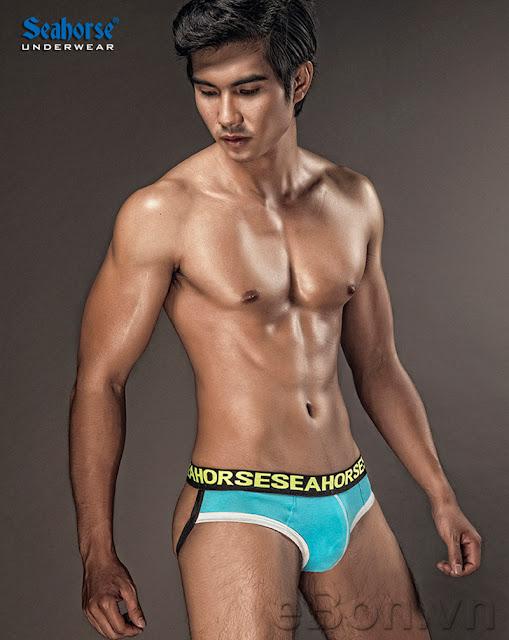 quần lót nam Seahorse