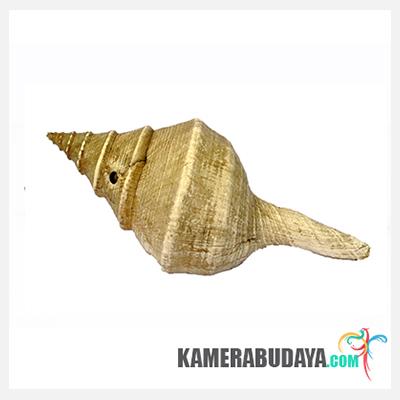 Fu atau Tahuri atau Korno, Alat Musik Tradisional Dari Maluku