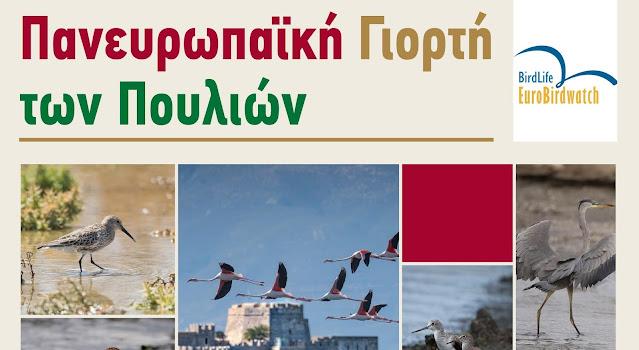 Πανευρωπαϊκή Γιορτή των Πουλιών: Γνωριμία με τα πουλιά του υγρότοπου Ναυπλίου - Νέας Κίου