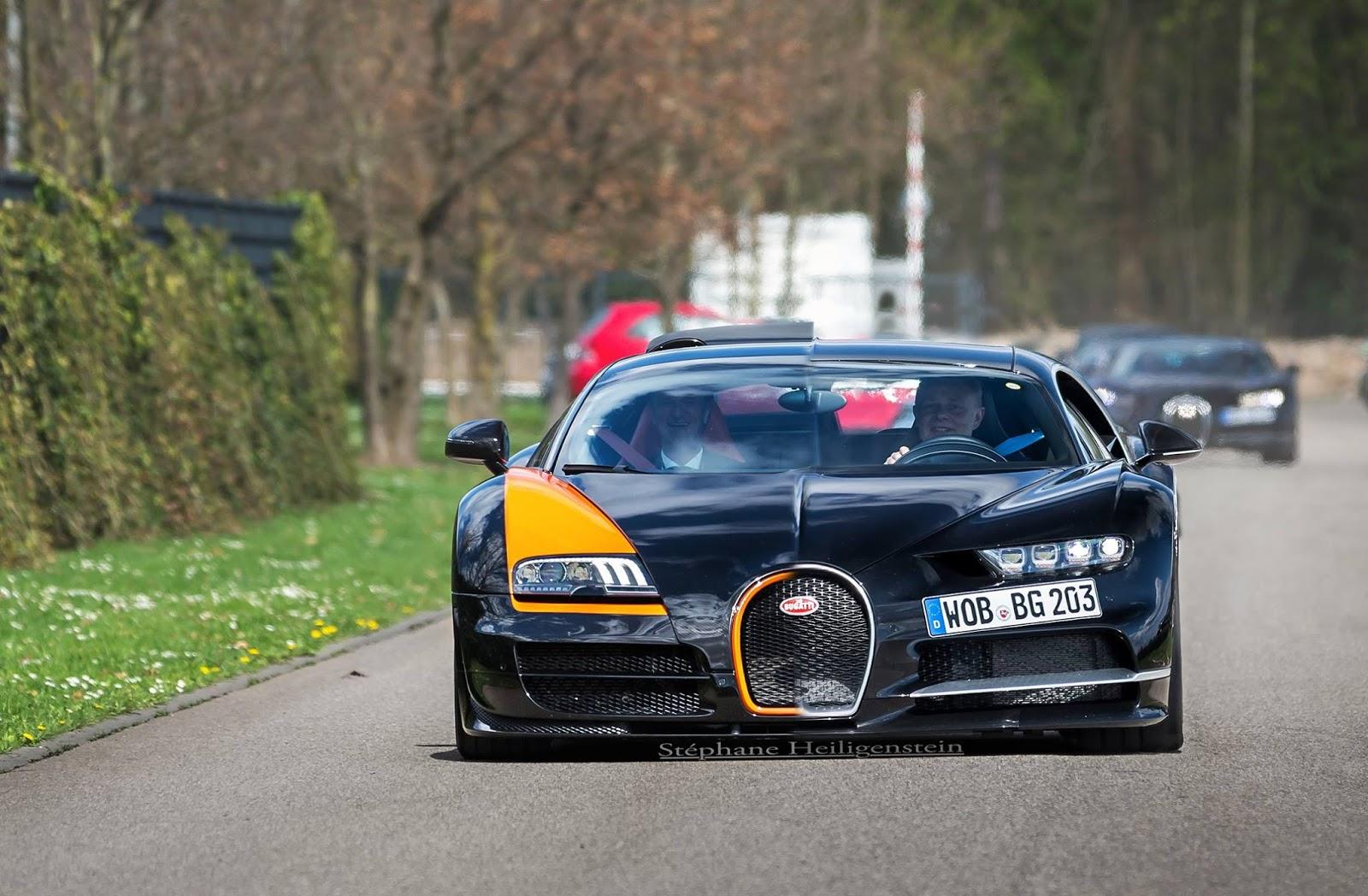 Ngắm bầy lợn con Chiron lượn lờ quanh nhà máy Bugatti