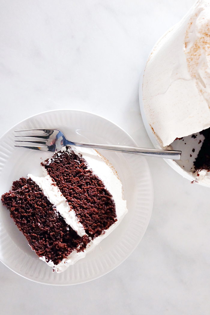 slice of Mexican Chocolate Cake with Mascarpone Whipped Cream Frosting plated