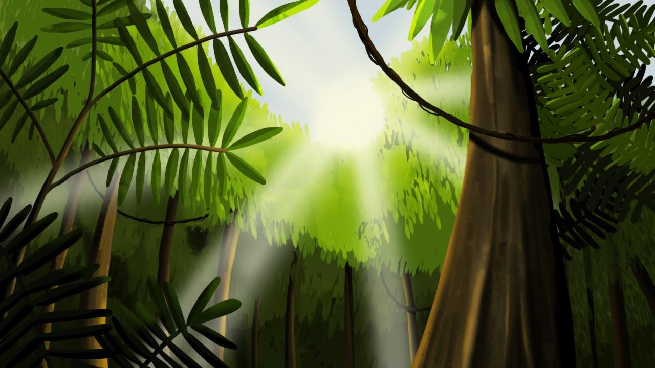 decor foret tropicale