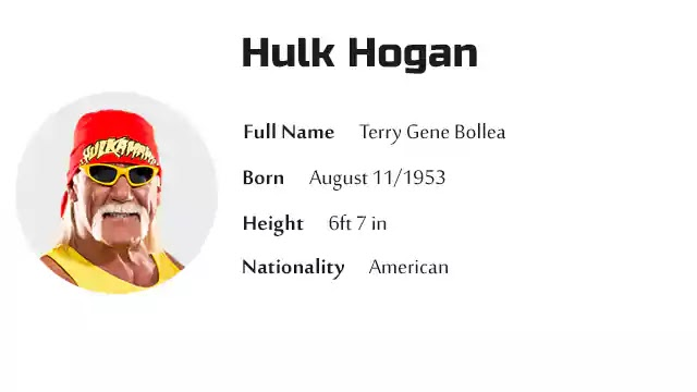 Hulk Hogan Biography History Net Worth And More