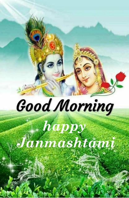 Good Morning  happy Krishna Janmashtami