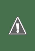 FANCL発芽米