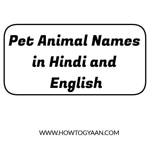 pet animal names, Pet Animal Names in Hindi and English