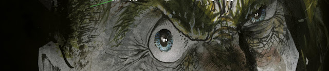 Review del cómic Asilo Arkham: Locura de Sam Kieth - ECC Ediciones