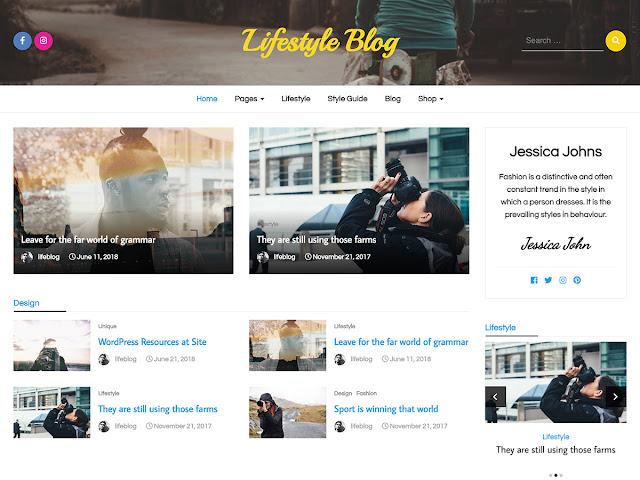 Wordpress tema görseli