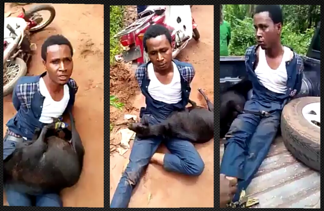 Pastor caught stealing goat, got public disgrace in Anambra State