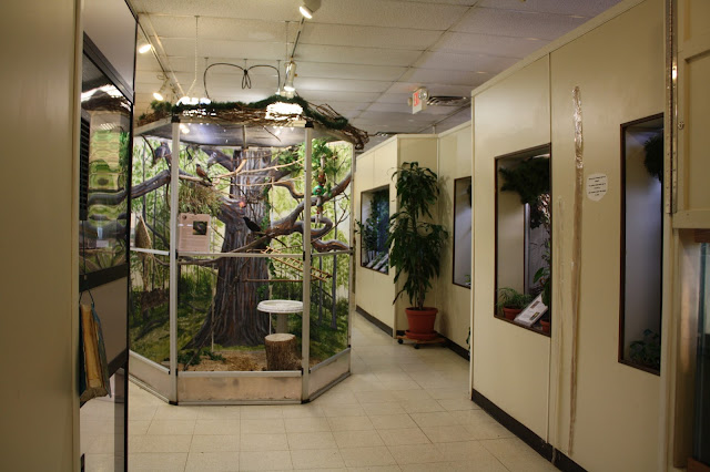 Animal viewing area at Willowbrook Nature Center.