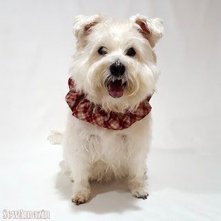 Red Plaid Christmas Lodge Dog or Cat Scrunchie Ruffle Collar