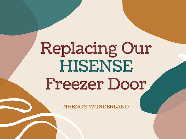 Replacing Our HISENSE Freezer Door