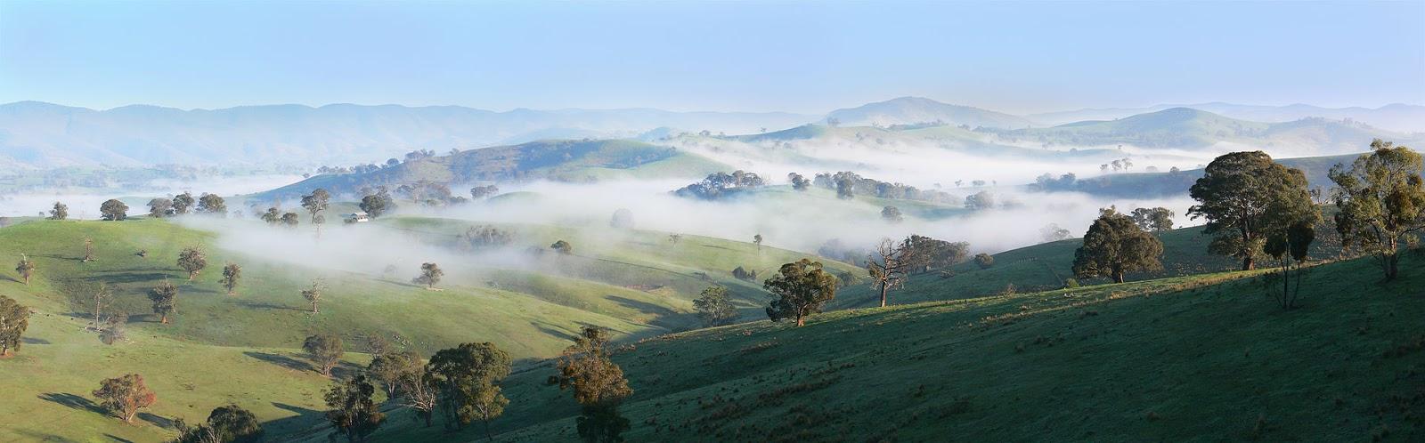 Разница между 'fogginess', 'fog', 'foggy', 'mistiness