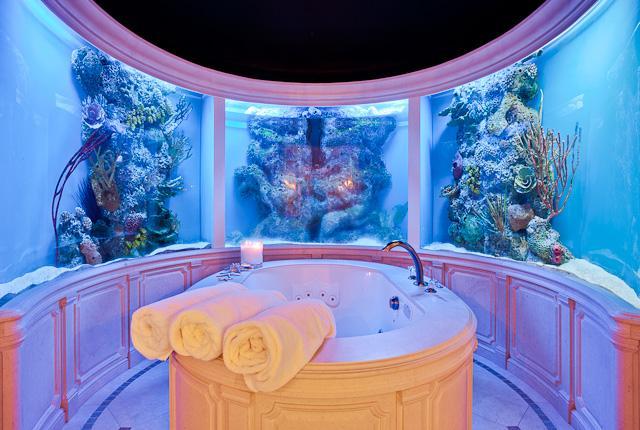 Unusual Bathrooms: North Dallas Real Estate: Most Unusual Dallas Bathroom