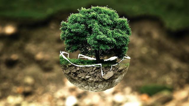 Menjaga Kebersihan Lingkungan, Kunci Sehat Anak-anak Indonesia