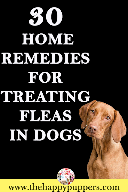 30 NATURAL WAY TO GET RID OF FLEAS