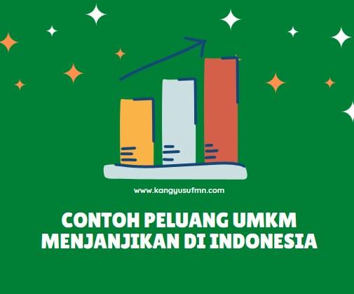 Contoh Peluang UMKM Menjanjikan di Indonesia