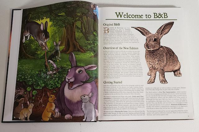 Bunnies & Burrow art