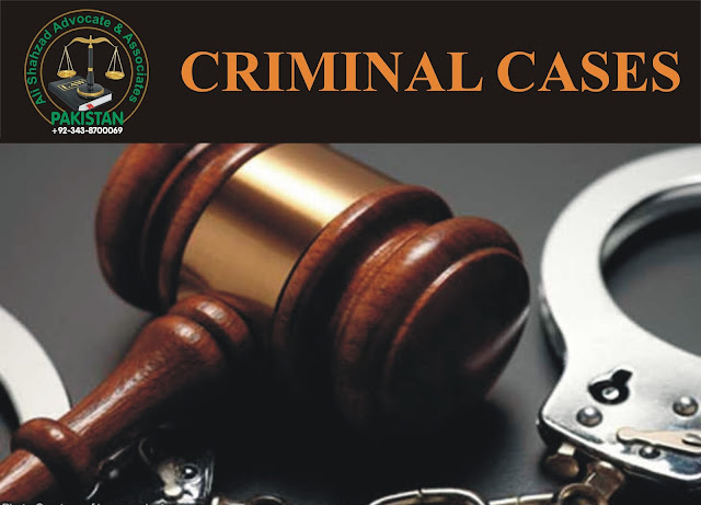 criminal cases lawyer