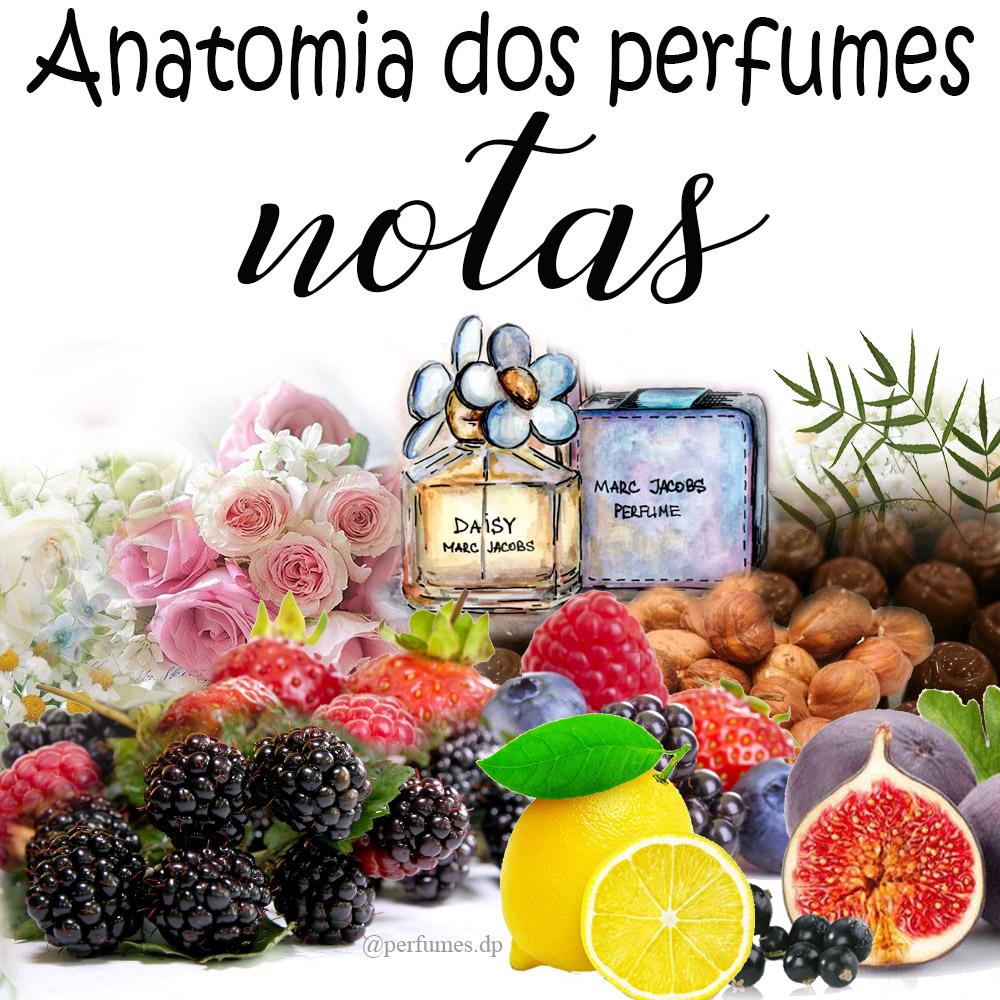 Notas de perfumes