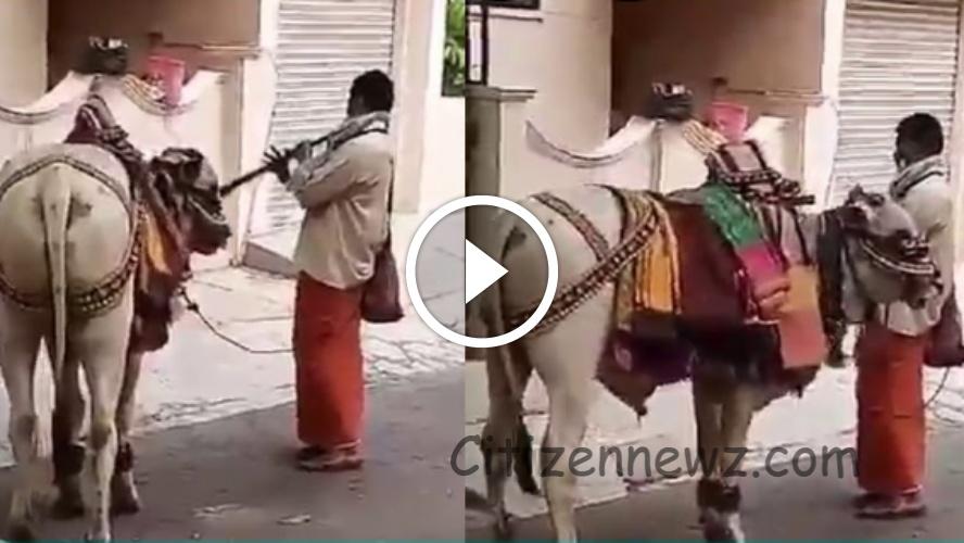 இசையமைப்பாளர்களுக்கே சவால் விடும் பூம் பூம் மாட்டுக்காரர் வேற லெவல் வீடியோ