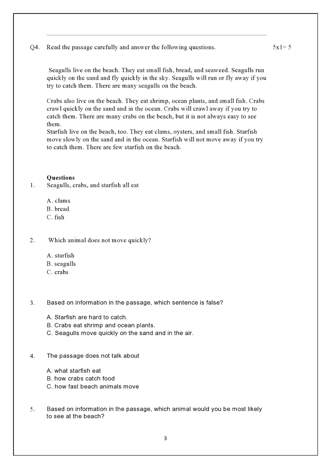 Birla World School Oman Revision Worksheet For Grade 3 B