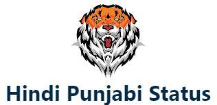 Hindi Punjabi Status