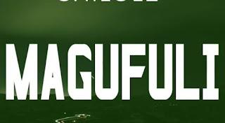 Audio Shilole – Magufuli  Download Mp3
