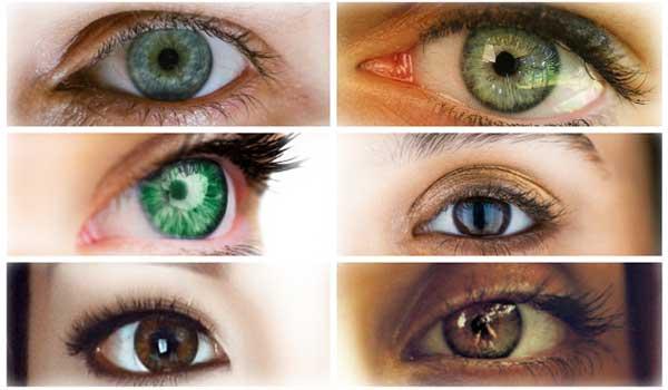 ما هي أنواع العيون الموجودة؟