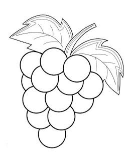 buah anggur hitam putih