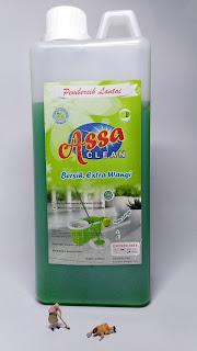 assa clean