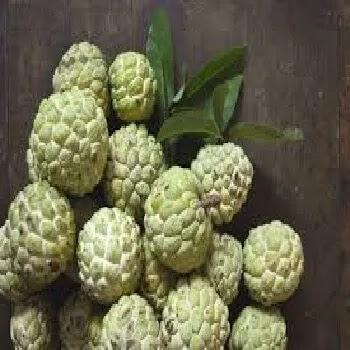 सीताफळ, Custard Apple fruits name in Marathi