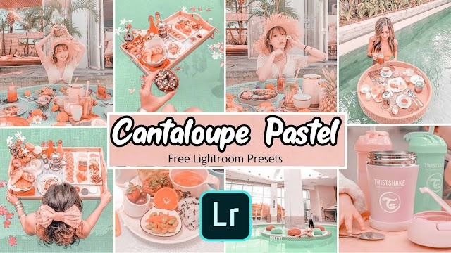 Cantaloupe Pastel Presets For Lightroom Free Download