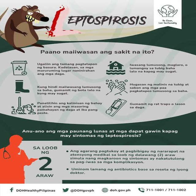 paano maiiwasan ang leptospirosis