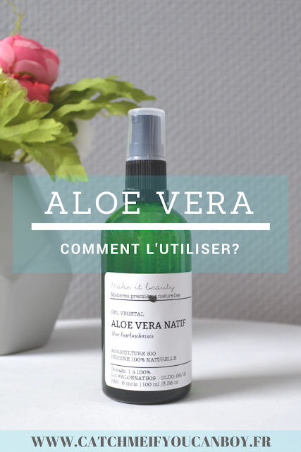 Aloe Vera utilisation bienfaits acheter vertus catchmeifyoucanboy