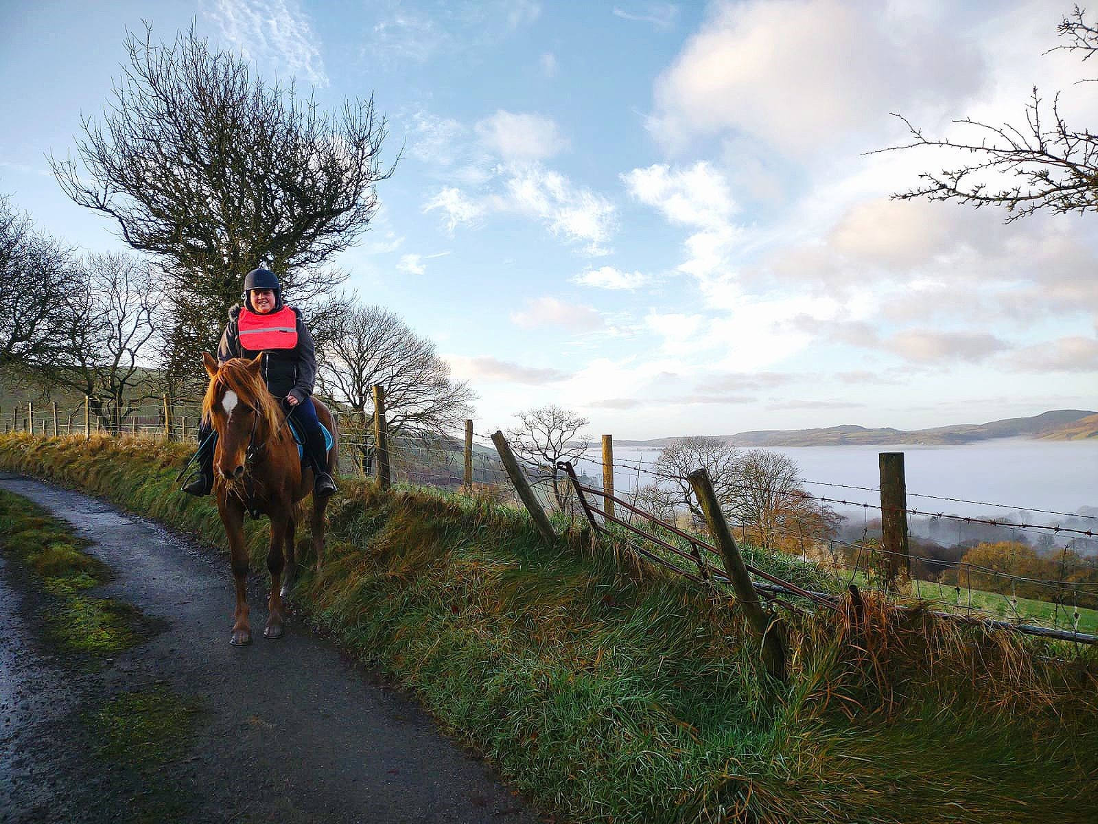 A girls wearing pink hi-viz is riding a chestnut horse with a view over the welsh mountains