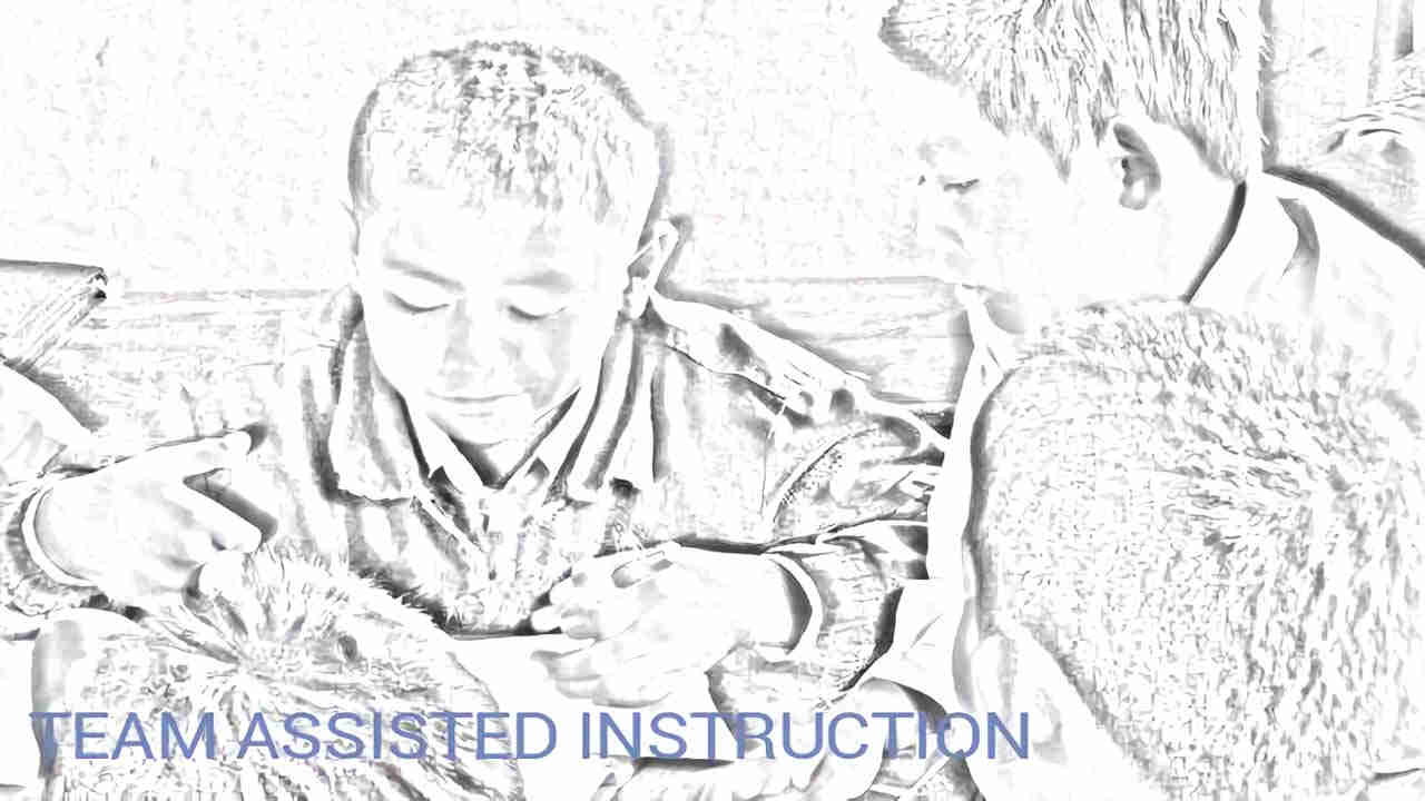 team assisted instruction (TAI)