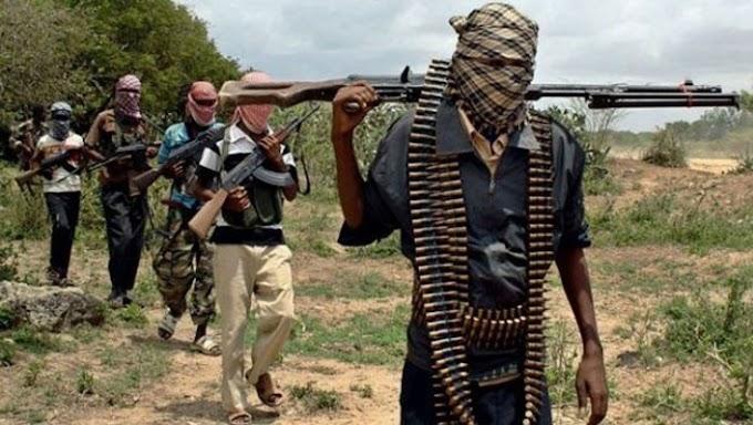NEWS : Bandits  Attack Sakaba Village, Killed DPO, Three Policemen And Volunteers In Kebbi State