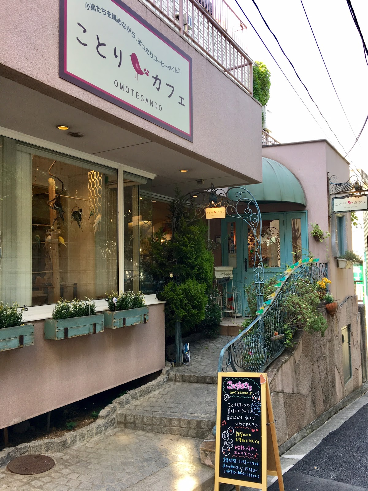 Kotori Cafe Omotesando