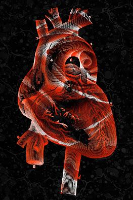 ما هي الأمراض القلبية الوعائية؟