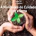 Lição 12 - A Mordomia do Cuidado com a Terra