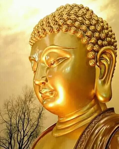 Lord Gautam Buddha images Hd download [ Best Collection ]