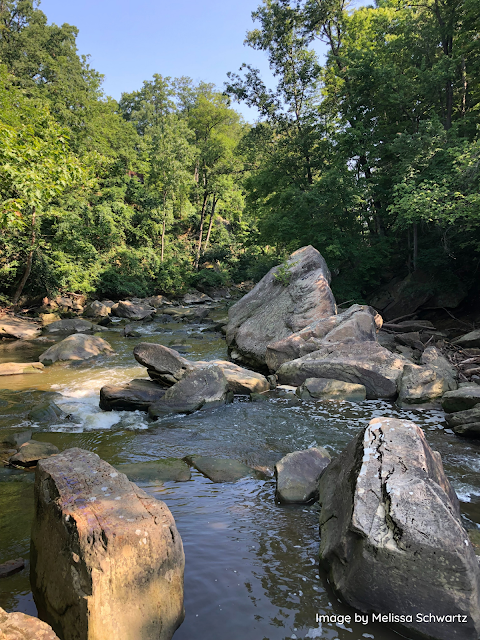 Cumbersome boulders really give Rocky River in Ohio its name!
