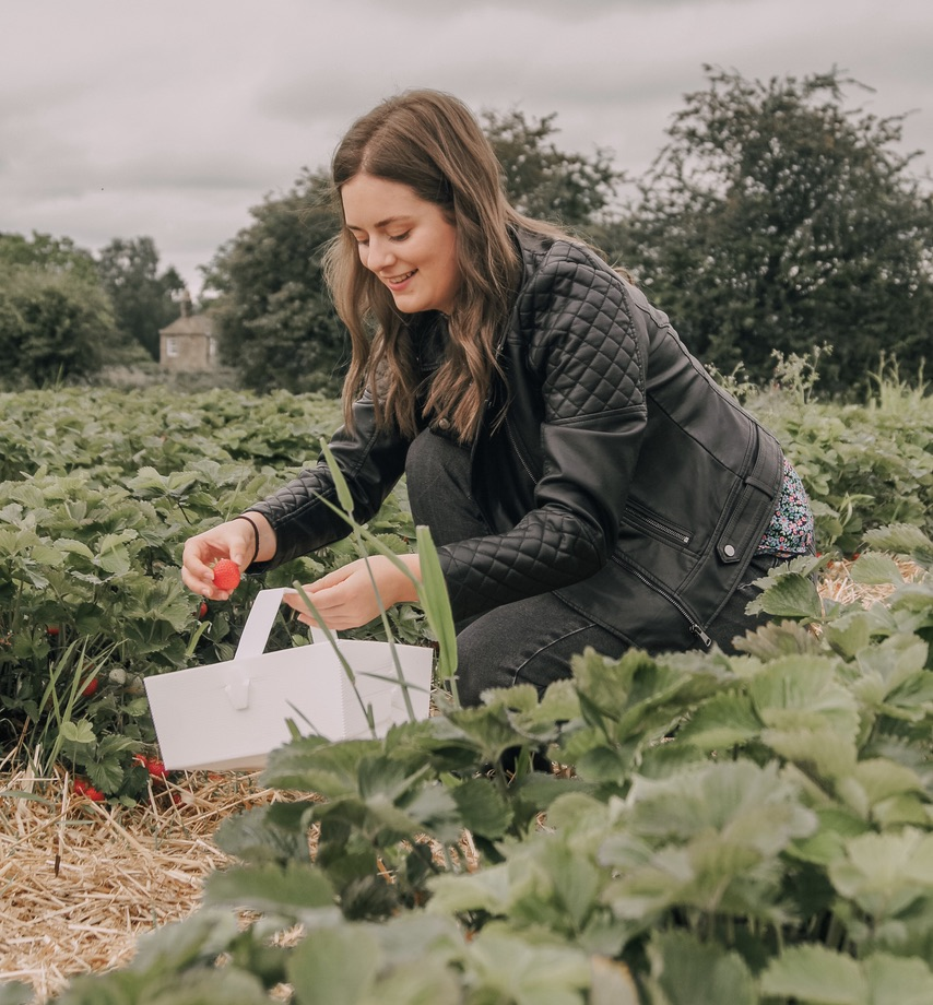 Brown haired lady in a leather jacket crouched on the floor picking strawberries from the plant
