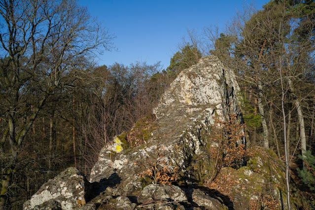 Eschbacher Klippen und Maibacher Schweiz | Wanderung rund um Michelbach im Taunus 12