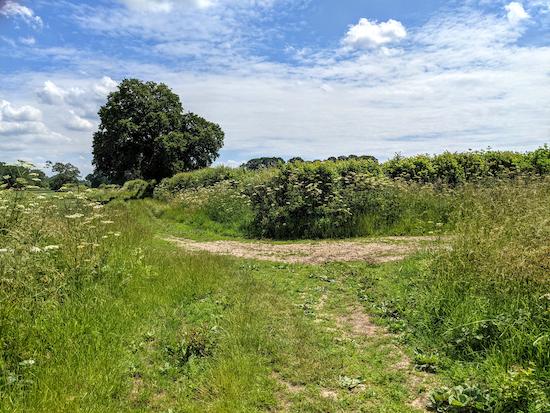 Turn right on Essendon bridleway 10 - point 5