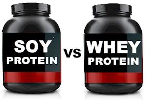 soy vs whey protein