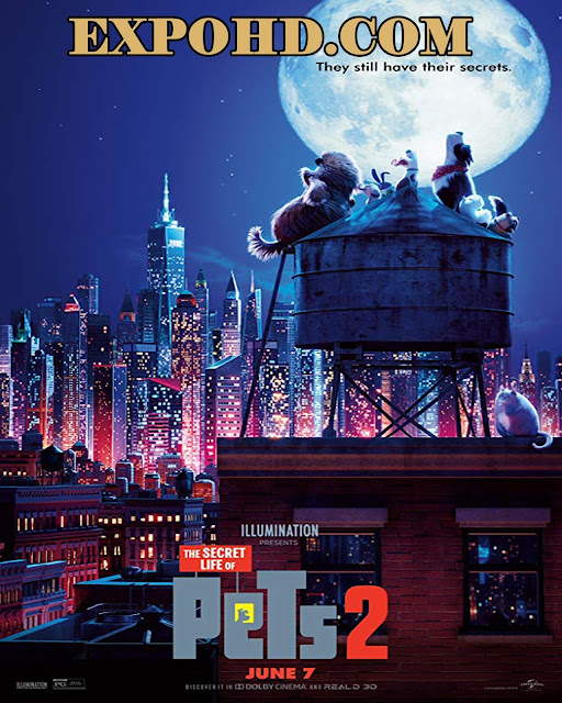 The Secret Life Of Pets 2 2019 Full Movie Download 720p | HDRip x 265 ACC 1.1Gbs [Watch Free]