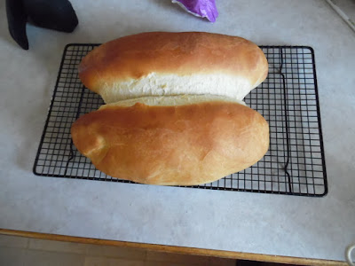 photo of sour dough french bread